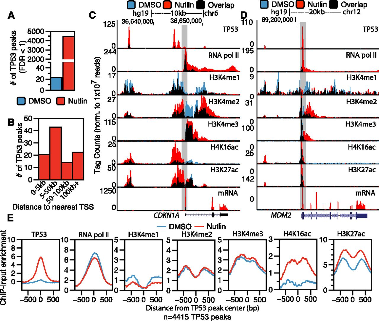Epigenomic analysis of TP53 activation in primary human fibroblasts